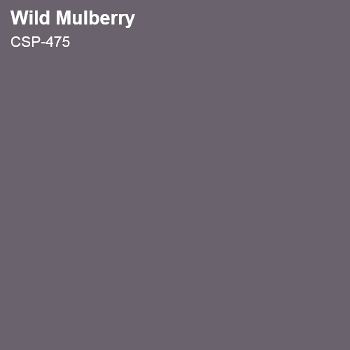 Wild Mulberry Color Sample